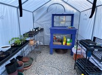 Wendy's Greenhouse